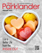 The Parklander January 2015 article What is Pilates and what can it do for me?